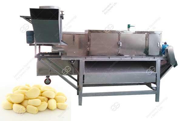 Automatic Garlic Peeling Machine For Sale Manufacturer