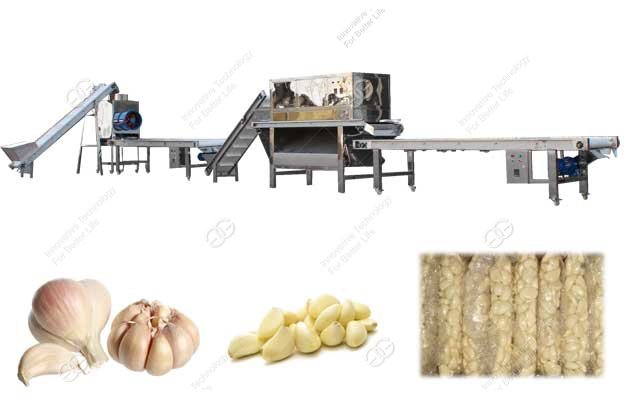 Automatic Garlic Peeling Processing Plant