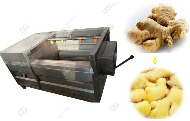 Stainless Steel Ginger Skin Peeling Machine