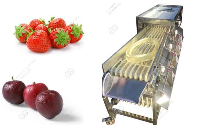Date Fruit Sorting Machine For Cherry,Olive,Cashew,Walnut