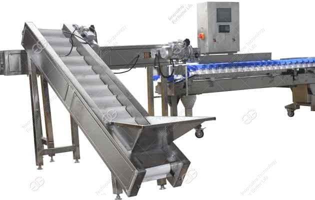 Automatic Fruit Weight Sorting Classifier Machine