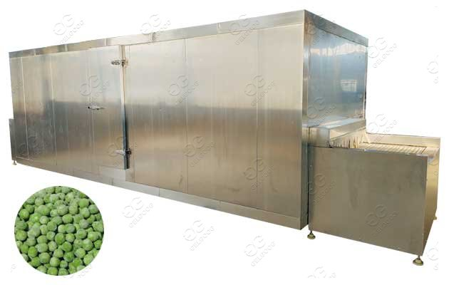 IQF Frozen Peas Processing Plant