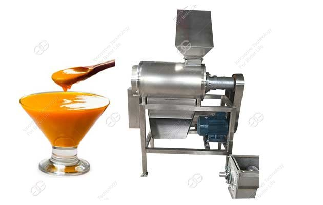 mango juice making machine