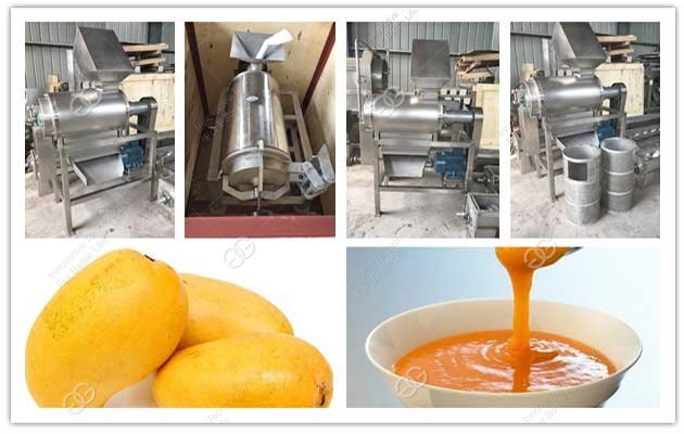 fruit pulping machine in factory
