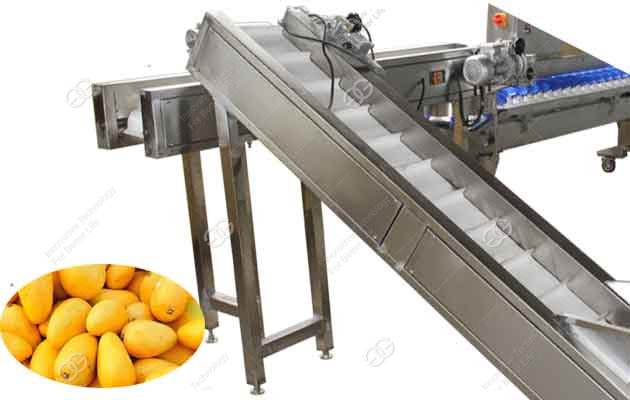 mango weight sorting machine