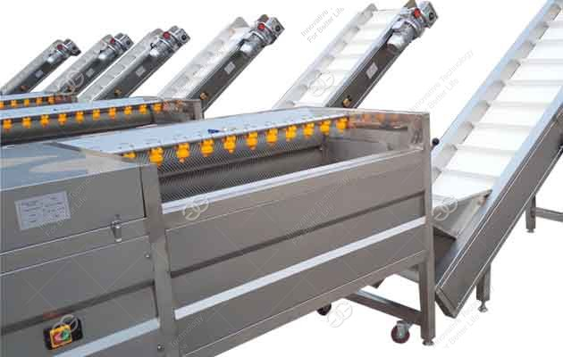 potato cleaning and peeling machine supplier