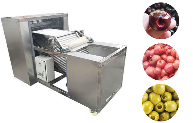 automatic fruit pitting machine