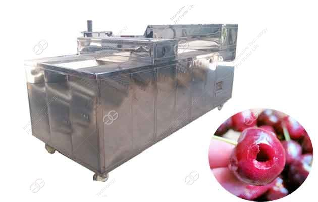 cherry pitter price