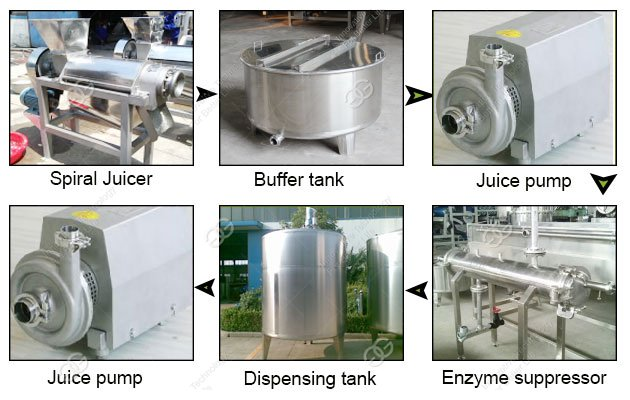 fruit juice processing plant cost