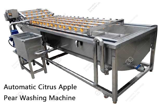 citrus cleaning machine price