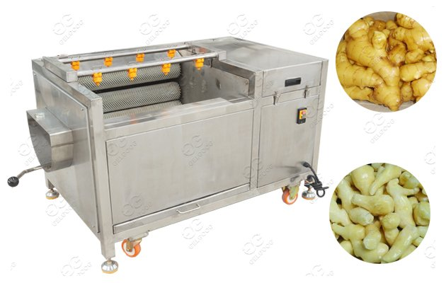 Stainless Steel Turmeric Ginger Washing Machine With Peleling Function