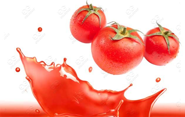 Provide Tomato Sauce Factory Project From Tomato Paste Production Line Manufacturer