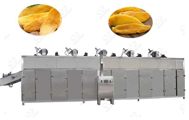 dried mango processing machine