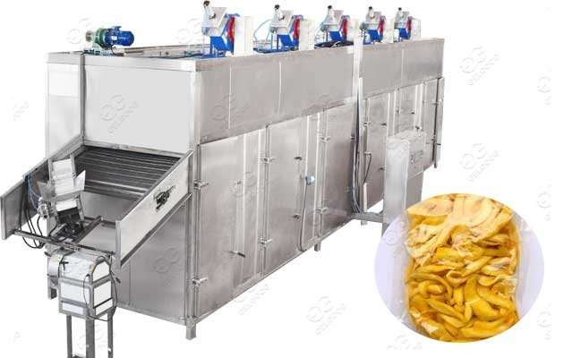 mango drying machine south africa