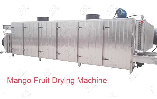 mango drying machine manufacturer