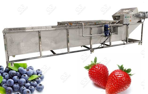 blueberry cleaning machine for sale