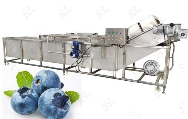 blueberry washing machine price