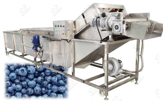 industrial blueberry washing machine