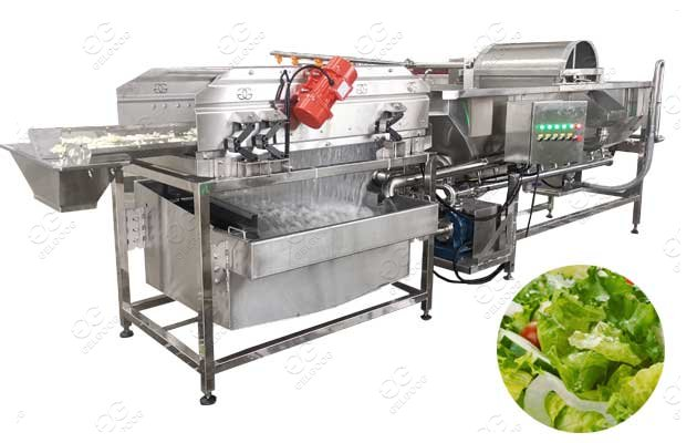 Commercial Vegetable Washing Machine 500kg/h