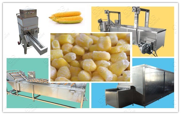 sweetcorn freeze processing plant cost