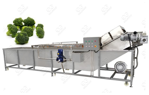 Automatic Broccoli Florets Cleaning Machine