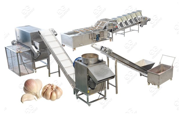 Automatic garlic production Line