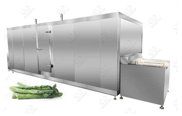 IQF Asparagus Processing Machine IQF Freezer