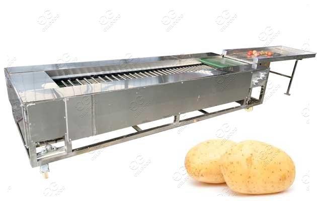 Potato Washing And Grading Machine Manufacture Price