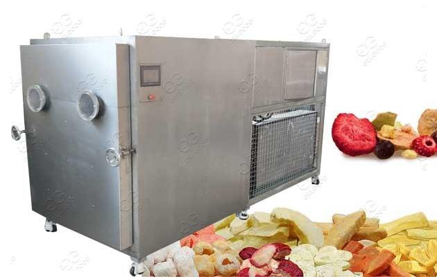 Fruit Vacuum Freeze Drying Machine Manufacturer Price